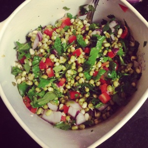 Sprouted Bean Salad